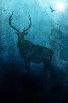 deer art, bird art, space art, bird art, stag, nature art, the mind blossom, frank donato, antlers, night sky, natural art, society6, art prints