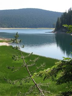 Black Lake, Durmitor National Park