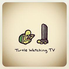 Cute Turtle Drawings, Turtle Sketch, Animal Drawings, Sweet Turtles, Cute Turtles, Tiny Turtle, Turtle Love, Kawaii Doodles, Cute Doodles