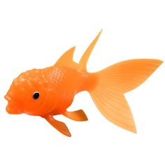 Shop All That Glitters Goldfish.  We have nothing but glowing things to say about this floating, light-up goldfish.  Place it in the pool or tub and it lights up in an array of bright colors.