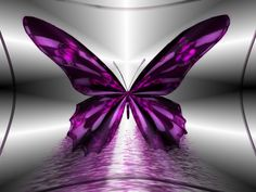 Purple Butterfly | amazing-purple-butterfly-hd-pc-wallpaper
