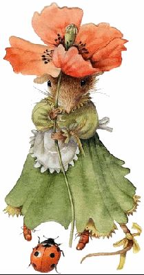 Vera the Mouse meets a ladybug by Marjolein Bastin