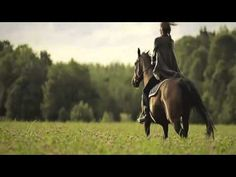 Prepare For Goosebumps….Watch This Horse Tribute – The Horseaholic