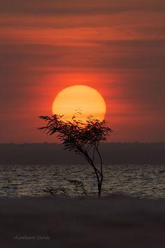 Pôr-do-sol na ponta do Maguary, Floresta Nacional do Tapajós