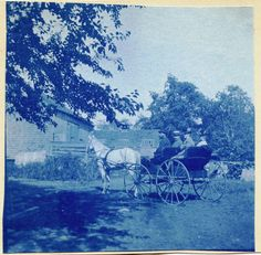 SCENE WITH PEOPLE IN HORSE-DRAWN CARRIAGE & ORIGINAL ANTIQUE CYANOTYPE PHOTO