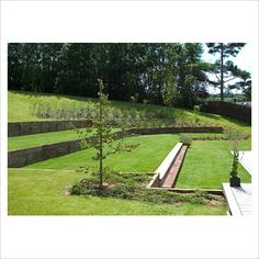Terraced lawns - This is a cool looking lawn