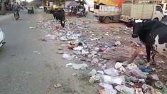 અમદાવાદમાં જ્યાં જુઓ ત્યાં કચરાના ઢેર, સફાઈ કર્મઓની હડતાળ ત્રીજે દિવસે પણ થયાવતEverywhere you look in Ahmedabad, there will be piles of rubbish, and cleaning strikes will take place even on the third day અમદાવાદમાં સફાઈ કર્મચારીઓની હડતાળ ત્રીજા દિવસે પણ યથાવત છે. અ�