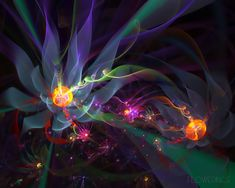 fantasy abstract flowers