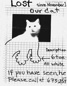 From The Cats Chapter In Lost Lost And Found Pet Posters From