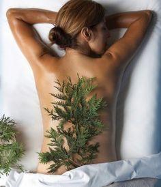 The Signature Cedars Massage at Aspira Spa incorporates aromatherapy using fresh native cedar herb.