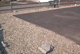 Crushed stone mulch is maintenance-free, holds up to dog traffic and provides a clean look.