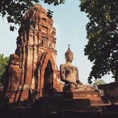 No mud, no lotus flower  Ayutthaya, Thailand  #Regram via @whyweseek