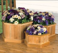 Love the colors of the flowers. Planter Trio Woodworking Plan