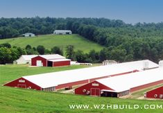 Hebei Weizhengheng Modular House Technology Co. Poultry Farming, Home Technology, Free Range, Steel Structure, House Layouts, Farm House, Golf Courses, Layers, Dairy