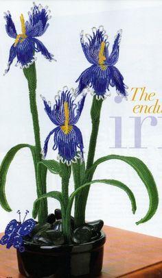 Iris Bead