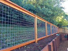 How to Install the Hog Wire Fence Panels — House Decorations Wire And Wood Fence, Wire Fence Panels, Cattle Panel Fence, Hog Wire Fence, Cattle Panels, Deer Fence, Welded Wire Fence, Hog Panel Fencing, Grape Trellis