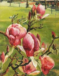 """""""Red Magnolia by Stanley Spencer 1938 ( Cookham, Berkshire. Stanley Spencer, Harlem Renaissance, Plant Painting, Painting & Drawing, Your Paintings, Landscape Paintings, Landscapes, Beautiful Paintings, Garden Of Earthly Delights"""