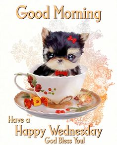 Good Morning Wednesday, Good Morning Happy, Good Morning Images, Happy Day, Happy Wednesday Pictures, Cute Teacup Puppies, Tumblr Image, Facebook Image, Pictures Images