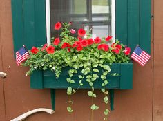 Flowerbox on the Garden Shed.