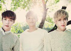 Lay, Tao, Kris