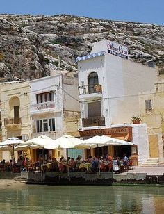 Stone Crab, Xlendi Bay, Gozo, Malta