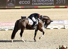 It's all hard work and there's no getting away with anything, I can promise you. | Charlotte Dujardin's 10 Best Quotes