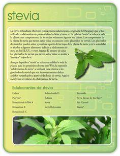 Stevia guía hojeable de calorie control council