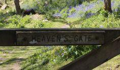 Lustleigh. Devon Photo by Aisling Eyre