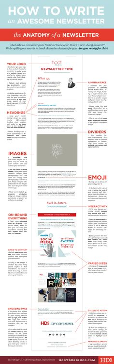 How to Write an Awesome Newsletter (Anatomy!) • Hoot Design Co. | Web Design, Branding, and Marketing in Columbia, MO