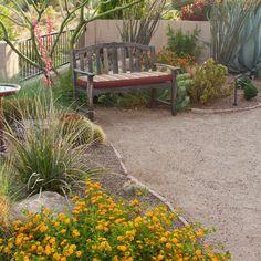 100 Arizona · Courtyard · Desert Landscape Design Ideas & Remodel Pictures | Houzz