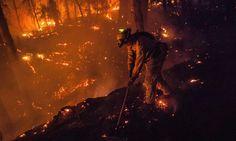 California officials ask residents to avoid social media for Rim fire updates http://www.theguardian.com/world/2013/aug/27/rim-fire-california-social-media-avoid