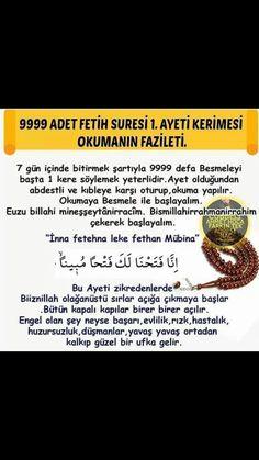 Quran, Allah, Islamic, Holy Quran