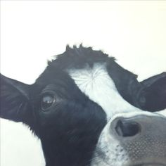 Arthur - even if he is a she. Funny Cow art. Oil on canvas by Charles Hannah .