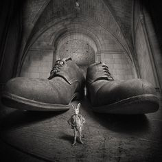 Mad Bunny and the church of the big shoes • by Yves Lecoq