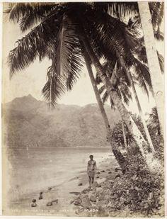 Pango Pango Harbour - Samoa, Burton Brothers (photography studio), 1800s, Dunedin  Unknown (photographer), 1800s, Samoa Polynesian Art, Polynesian Culture, Tahiti, Samoan Dance, Samoan People, Maybe In Another Life, Historical Images, Treasure Island, French Polynesia