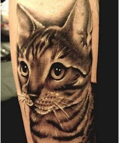 10 Cute Cat Tattoo Designs