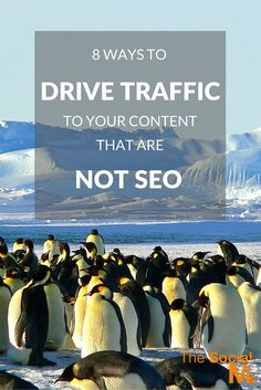 8 Ways To Drive Traffic To Your Content That Are Not SEO - The Social Ms