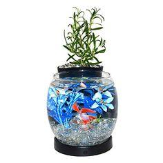 Self-Conscious Anchor Hocking Fish Bowl Clear Glass 1 Gallon Aquarium Terrarium Pet Supplies