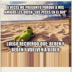 Beben y beben, alcohol Best Quotes, Funny Quotes, Funny Memes, Jokes, Memes Humor, Spanish Humor, Spanish Quotes, Kermit The Frog, Humor Grafico