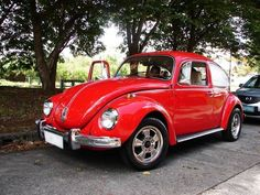 Slug bug red!