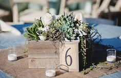 boho, beach , rustic, centerpieces, deco, decor, flowers, green, numbers, reception, succulents, table, things, flower, wedding, San Clemente, California