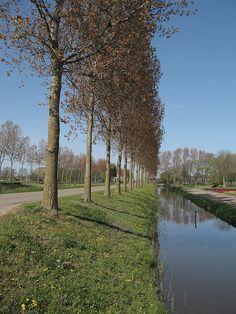 Polder by driek, Netherlands, via Flickr