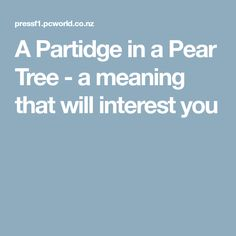 A Partidge in a Pear Tree - a meaning that will interest you
