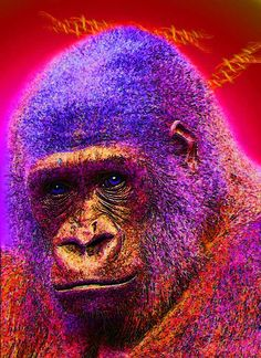 """Leatherback Gorilla Contact: Marv Lyons - 619.691.8776  lyons@visionsynthesis.net  47"""" x 35"""" print on fine watercolor paper or canvas $685 • Shipping Extra"""
