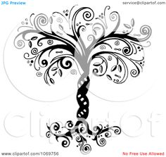 Tree Drawings Black And White | Clipart Ornate Whimsical Tree Of Life In Black And White - Royalty ...