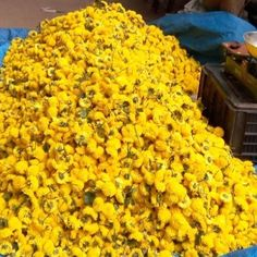 I saw some beautiful flowers at a local market today.  #bengaluru #flowers #market #nature