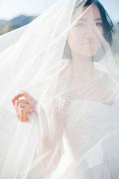 gorgeous veil   Melissa Gidney Photography   Glamour & Grace