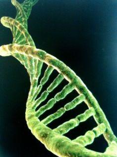 19/07/1990 se publica foto del ADN a escala atómica, obtenida con le Scanning Tunneling Microscope en el famoso California Institute of Technology (CalTech) de Estados Unidos