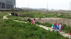School children visiting the terrain, April School Children, April 1st, Primary School, Playground, Dolores Park, City, Water, Travel, Children Playground