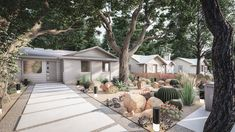 Desert-Inspired Front Yard with Cactus This desert-inspired front yard in Austin would look beautifu Low Maintenance Landscaping, Front Yard Landscaping, Landscaping Ideas, Front Walkway, Modern Landscaping, Online Landscape Design, Traditional Landscape, Planting Flowers, Landscaping